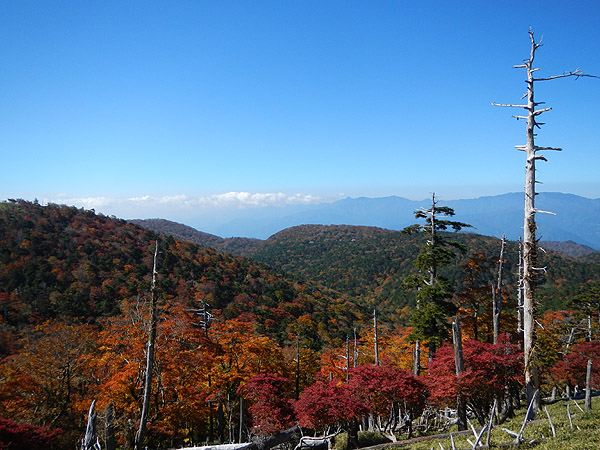 紅葉の日出ヶ岳