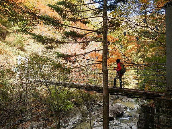シオカラ谷の吊橋