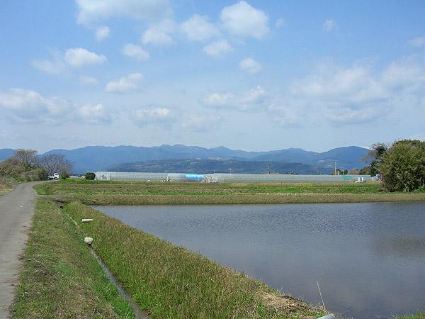 blog20110515_05.jpg