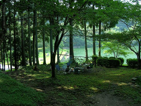 森のベース