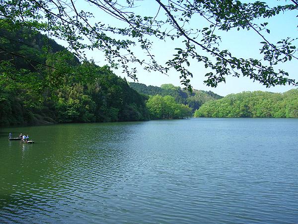 新緑の青蓮寺湖
